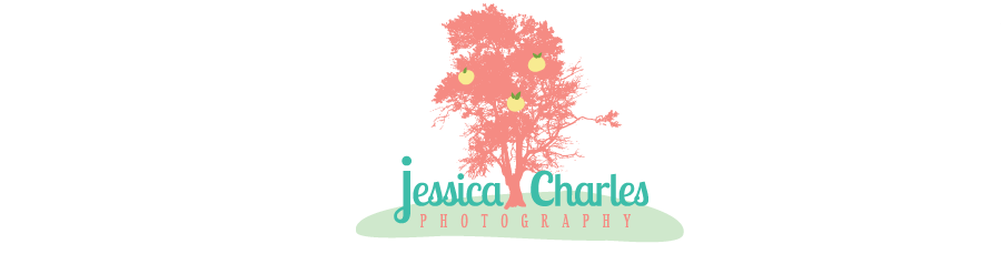 Natural Light Tampa Bay Wedding Photography by Jessica Charles Photography logo